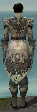 Elementalist Flameforged Armor M gray back