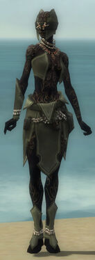 Ritualist Kurzick Armor F gray front