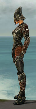 Warrior Kurzick Armor F gray side