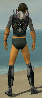 Assassin Elite Canthan Armor M gray chest feet back