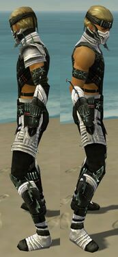 Assassin Elite Luxon Armor M dyed side