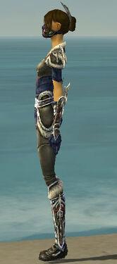 Assassin Norn Armor F gray side