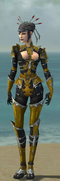 Necromancer Tyrian Armor F dyed front