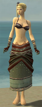 Ritualist Exotic Armor F gray arms legs front