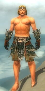 Warrior Luxon Armor M gray arms legs front