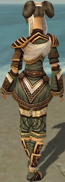 Monk Elite Canthan Armor F gray back