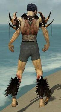 Necromancer Ancient Armor M gray chest feet back