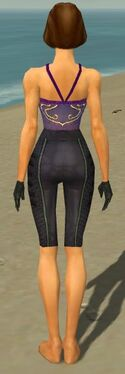 Mesmer Elite Rogue Armor F gray arms legs back