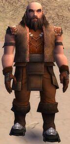 Ogden Stonehealer Armor Dwarven Front
