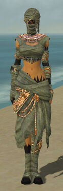 Ritualist Ancient Armor F gray front