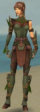 Ranger Druid Armor F gray front