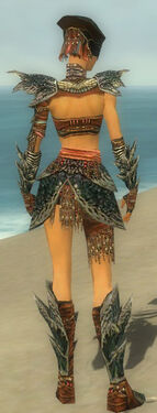 Warrior Luxon Armor F gray back