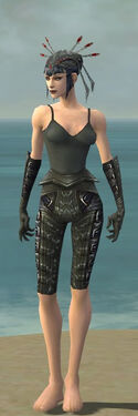 Necromancer Ascalon Armor F gray arms legs front