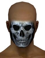 Skeleton Face Paint gray front