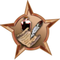Badge-571-1.png