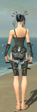 Necromancer Profane Armor F gray arms legs back