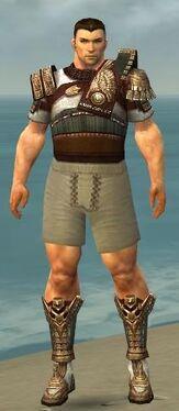 Warrior Vabbian Armor M gray chest feet front