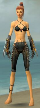 Assassin Exotic Armor F gray arms legs front