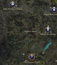 Drazach Thicket map