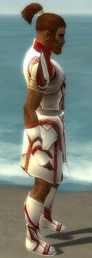Paragon Asuran Armor M dyed side