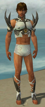 Paragon Elite Sunspear Armor M gray chest feet front