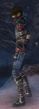 Assassin Monument Armor M dyed side
