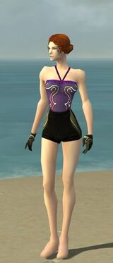 Mesmer Asuran Armor F gray arms legs front