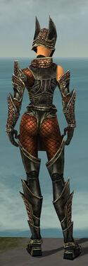 Warrior Kurzick Armor F gray back