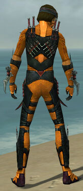 Assassin Elite Canthan Armor M dyed back