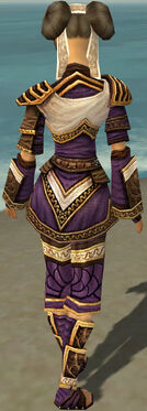 Monk Elite Canthan Armor F dyed back