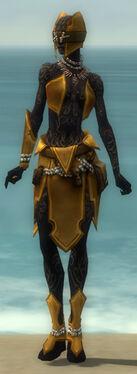 Ritualist Kurzick Armor F dyed front