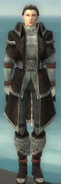 Elementalist Ancient Armor M gray front