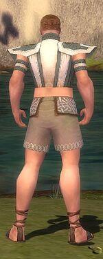 Monk Elite Saintly Armor M gray chest feet back
