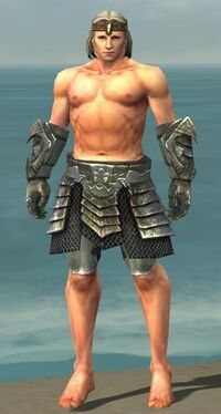Warrior Elite Templar Armor M gray arms legs front