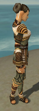 Monk Elite Canthan Armor F gray side