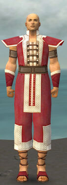 Monk Krytan Armor M dyed front