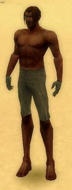Mesmer Norn Armor M gray arms legs front