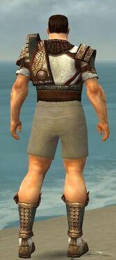 Warrior Vabbian Armor M gray chest feet back
