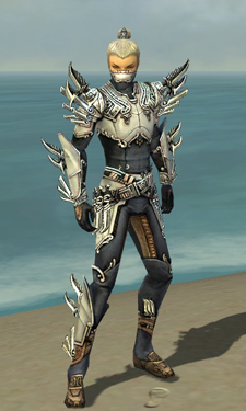 Assassin Asuran Armor M dyed front