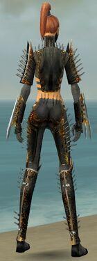 Assassin Exotic Armor F gray back