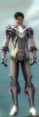 Elementalist Deldrimor Armor M gray front