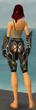 Warrior Elite Kurzick Armor F gray arms legs back