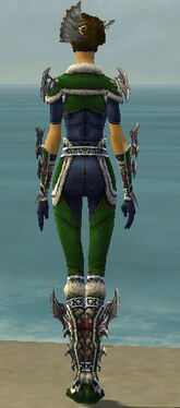 Assassin Norn Armor F dyed back
