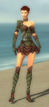Ranger Elite Studded Leather Armor F gray front