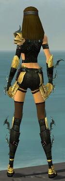 Assassin Elite Luxon Armor F dyed back