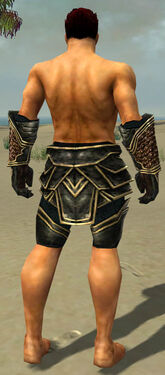 Warrior Kurzick Armor M gray arms legs back