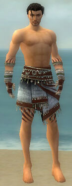 Ritualist Exotic Armor M gray arms legs front