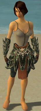 Warrior Elite Luxon Armor F gray arms legs front
