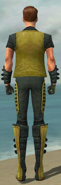 Mesmer Rogue Armor M dyed back