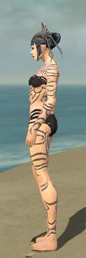 Necromancer Scar Pattern Armor F gray side